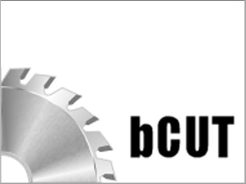 logo bcut